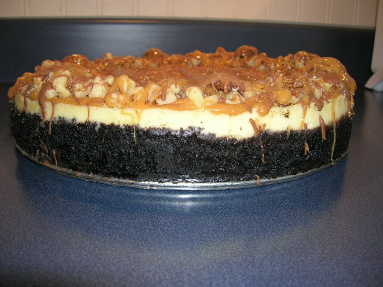 tuxedo-turtle-cheesecake