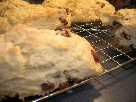 raisin scone