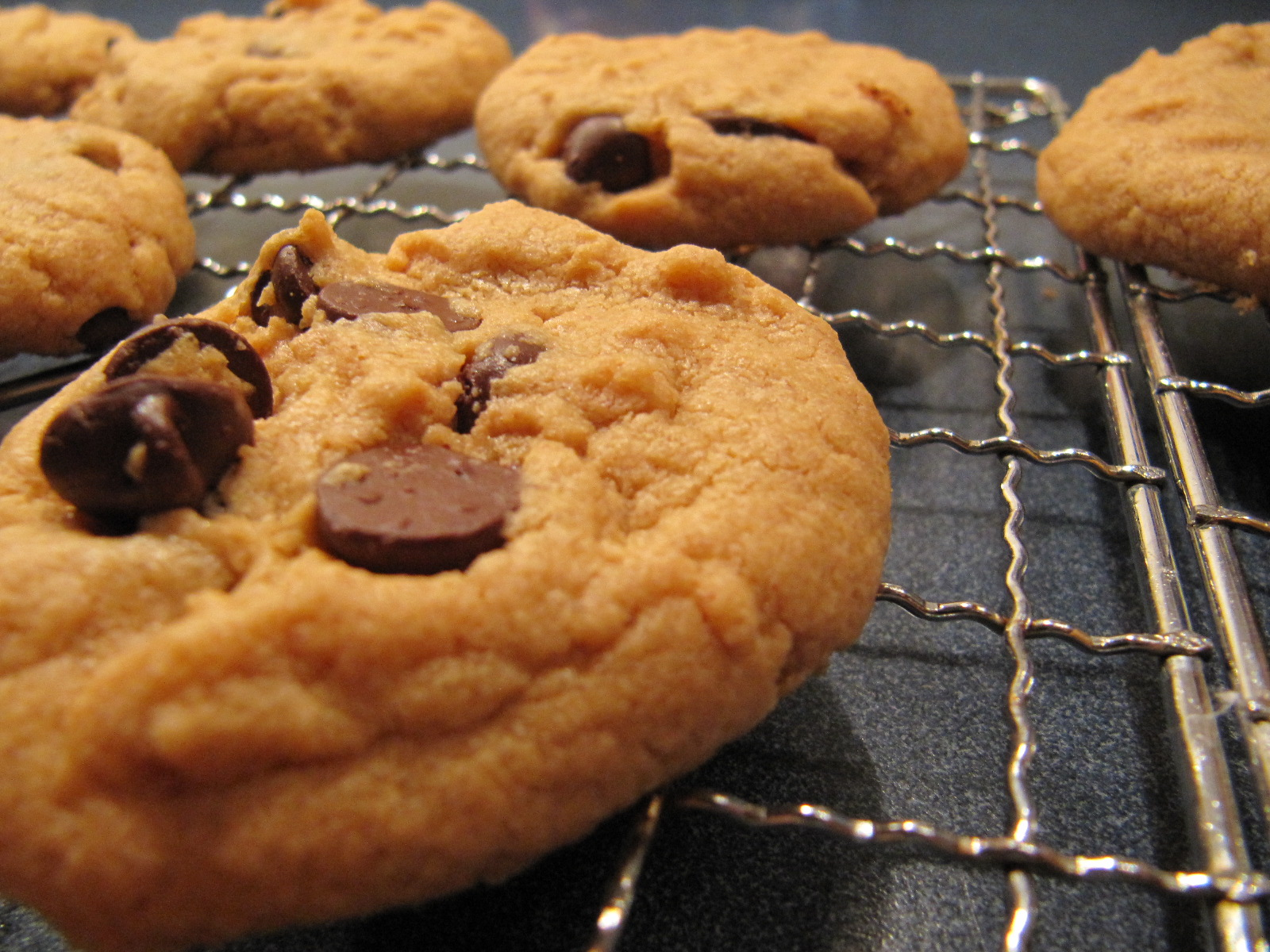 No egg peanut butter cookie recipes