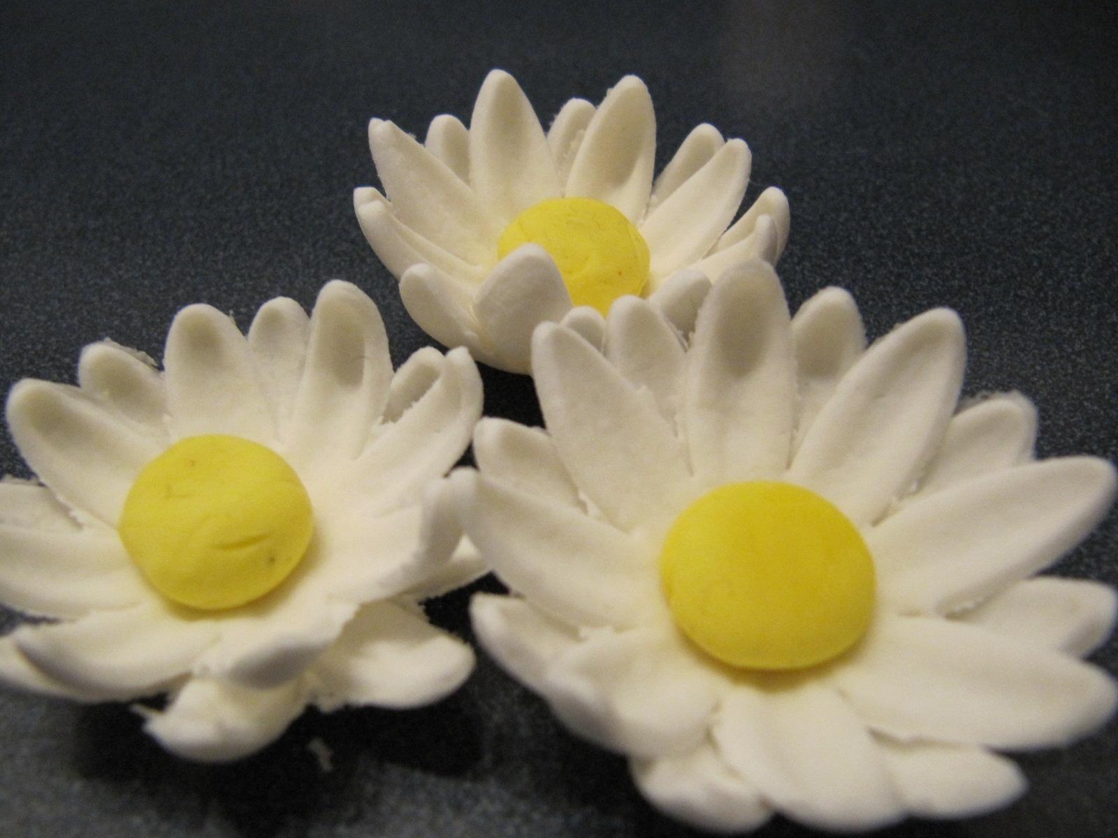 Gum Paste Daisy Ericas Edibles