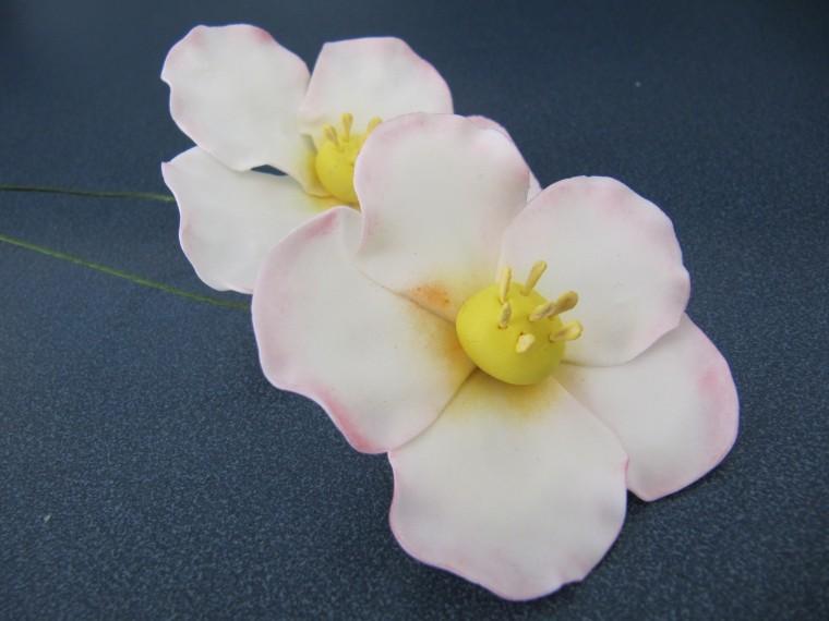 Wilton Advanced Gum Paste Flowers Erica S Edibles